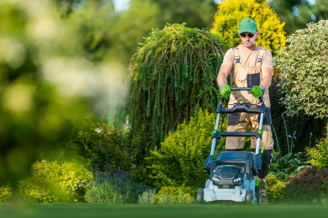 koszenie trawy dolnośląskie, koszenie trawy legnica
